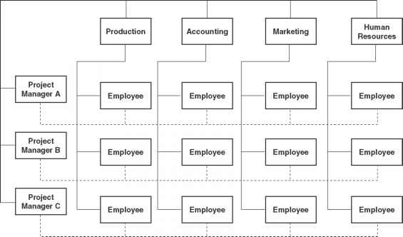 Organizational Structure Matrix
