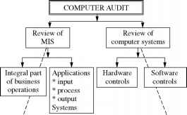 Computerized Auditing